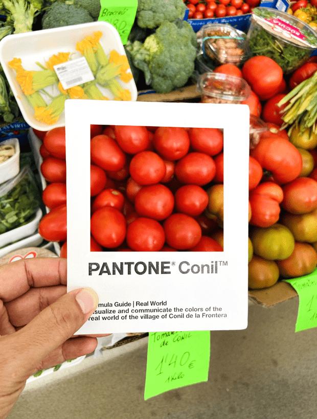 Tomates. Pantone Conil